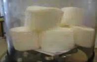 Gösses Science Lab – Marshmallows i vakumpump